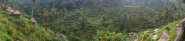 Indonesia - Bali - 18th ~ 20th March 2015 348
